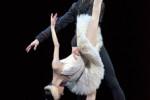Gran Gala de Dansa de l'IBStage al Centre Cultural Terrassa