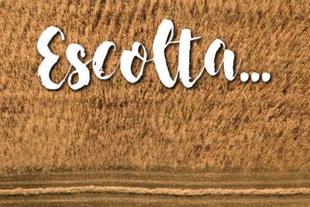 En marxa la 15a temporada de l'Orquestra Simfònica Julià Carbonell de les Terres de Lleida